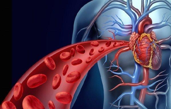 Tăng cường tuần hoàn máu bằng những cách nào?